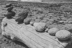 漂流木头和河岩石摘要 免版税库存图片