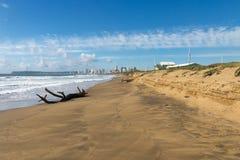 漂流木头注册空的海滩和蓝色多云天空 免版税图库摄影