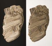 漂流木头粗砺的纹理木头 库存照片