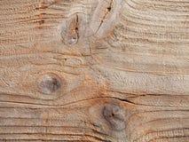 漂流木头纹理,五谷概略的漂泊木背景特写镜头 免版税库存图片