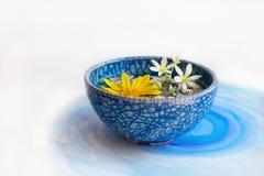 漂浮在一个蓝色杯子的花 免版税库存照片