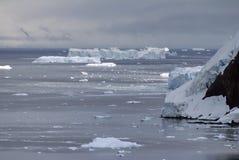 漂浮在一座积雪的山的基地的冰山 免版税图库摄影