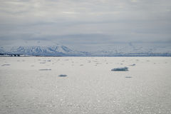漂浮在北极海的冰山在斯瓦尔巴特群岛 免版税库存照片