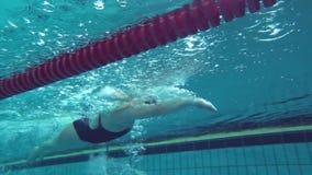 漂浮在大海水池的体育女性游泳者在实践期间在种族面前 影视素材