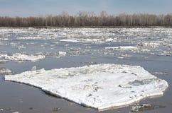 漂浮在河的残破的冰在春天 库存照片