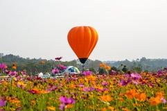 漂浮在波斯菊花田的橙色气球 免版税库存照片