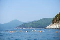 漂浮在海岛附近的Gillnetting或捕鱼网 库存图片