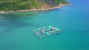 漂浮在海龙虾农场的寄生虫方法由海岸 股票视频