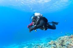 漂浮在珊瑚礁的轻潜水员 免版税库存照片