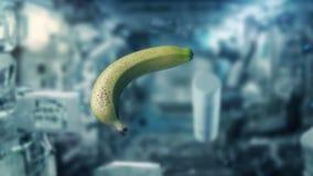 漂浮在空间的失重的香蕉 库存例证