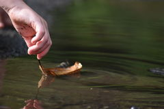 漂浮在水坑的叶子 免版税图库摄影