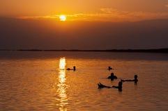 漂浮在死海在黎明,以色列的人们 库存照片
