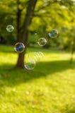 漂浮在绿色草坪的肥皂泡 库存照片