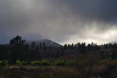 漂浮非常低对山的草甸的多雨云彩 免版税库存图片