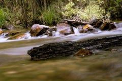 漂移在小河的木头 图库摄影