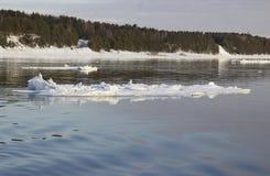 漂移在河的冰 免版税库存照片