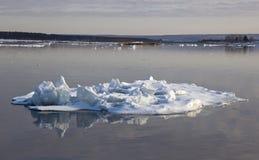 漂移在河的冰 库存图片