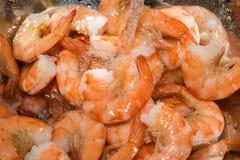 漂洗在水槽的煮熟的虾用水 免版税库存图片