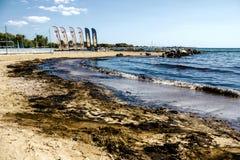 漏油在贴水Kosmas海湾,雅典,希腊, 2017年9月14日清扫 免版税图库摄影