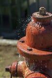 漏的消防龙头喷洒的水 库存图片