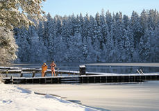漏洞冰游泳冬天 库存图片