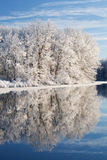 漏洞杰克逊湖冬天 免版税库存照片