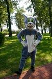 演员设计卡通者在服装玩偶动画片灰色猫汤姆`吃喝玩乐的浪荡子`演播室米高梅 免版税库存照片
