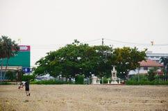 演奏与家庭的泰国孩子风筝 免版税库存照片