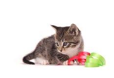 演奏丝带的小猫 库存照片
