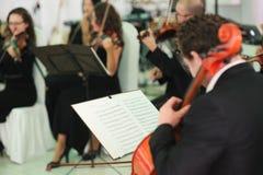 演奏中提琴的经典音乐家 免版税图库摄影