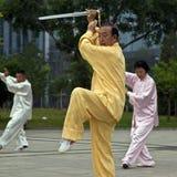 演奏剑taiji的长辈 免版税库存图片