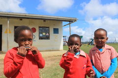 演奏口琴的小组非洲孩子户外在操场,斯威士兰,南非 免版税库存图片