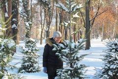 演奏在随风飘飞的雪的年轻女人和年轻人雪球在雪盖的树之间 免版税库存照片