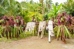 演奏平底锅长笛和手工制造鼓在热带植被之间的所罗门群岛的音乐家 图库摄影