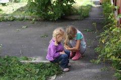 演奏户外18550的女孩 库存图片