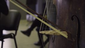 演奏最低音,经典音乐的音乐家 股票录像