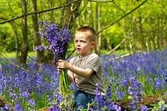 演奏森林的会开蓝色钟形花的草男孩 免版税库存图片