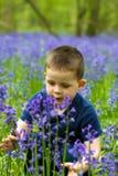 演奏森林的会开蓝色钟形花的草男孩 免版税库存照片