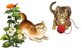 演奏猫。 与球的小猫。 免版税库存图片