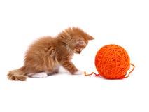 演奏羊毛的球小猫 库存照片