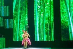 演奏负子蟾的中国民间音乐执行者 免版税库存照片