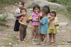 演奏越南语的子项 库存图片
