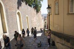 演奏金钱的小提琴和展示的Czechia人在布拉格城堡 免版税库存图片