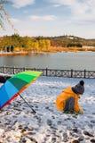 演奏雪的小男孩在北京奥林匹克森林公园 库存图片