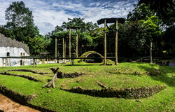 演奏orang的与美好的风景和多云天空的公园utan或猴子当在雅加达拍的背景照片 免版税库存照片