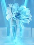 演播室射击了蓝色背景的女性现代舞蹈家 免版税库存图片