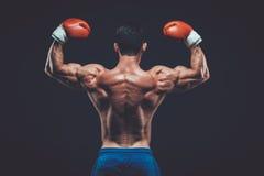 演播室射击的肌肉拳击手,在黑背景 免版税库存照片