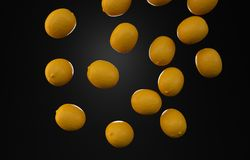 黑演播室柠檬果子照片 库存图片