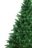 演播室被射击圣诞树 免版税库存图片