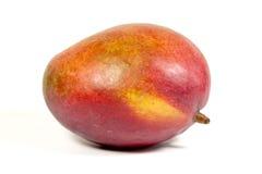 演播室被射击成熟五颜六色的热带芒果 免版税库存图片